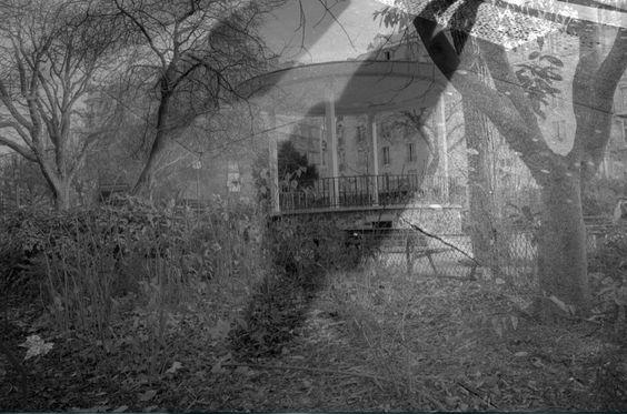 Les images sont des arrêts sur images suite au banc titre que j'ai réalisé. http://www.divergence-images.com/bernard-bisson/