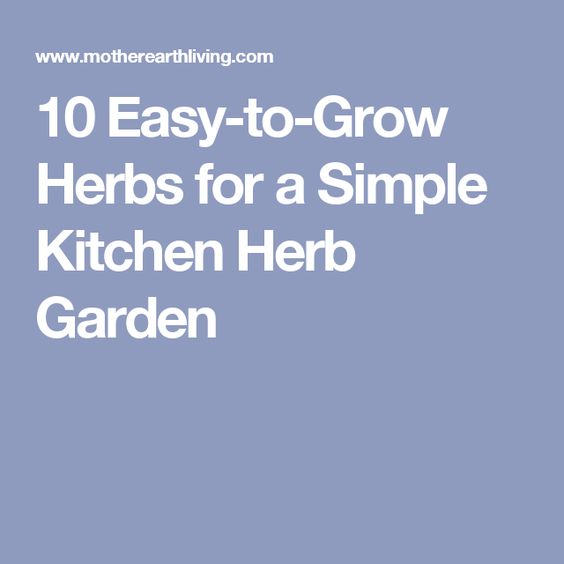 Simple Kitchen Herb Garden interesting simple kitchen herb garden 25 recycled tin can crafts