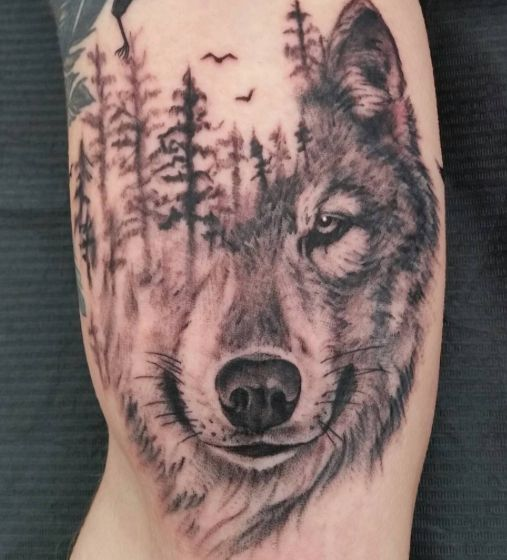 Image Result For Wolf And Trees Tattoo Wolf Tattoo Sleeve Wolf Tattoos Forest Tattoos