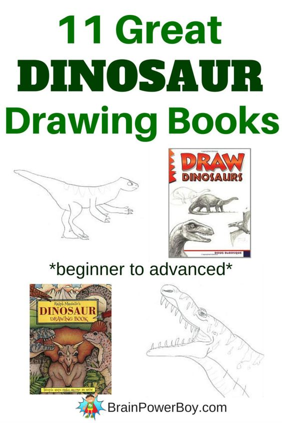 if you are looking for the best books for boys try these 11 great dinosaur books covers books from beginner to advanced great drawing books for boys - Drawing Books For Boys