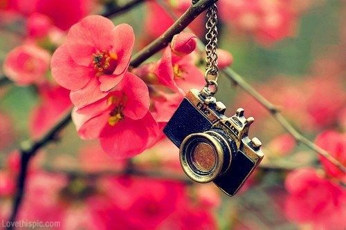 Vintage Camera Girly Photography Flower Beautiful Girl Pink Flowers Girls Photo Beauty Style Photos Vint