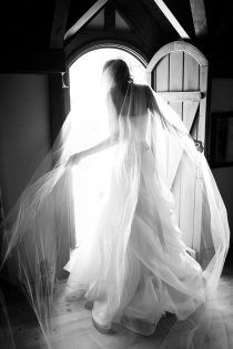 gorgeous veil and photo!!!