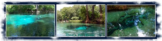 ginnie springs memorial day weekend video