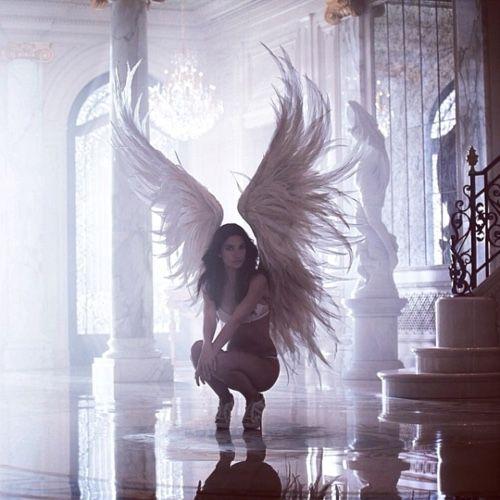 vs angel
