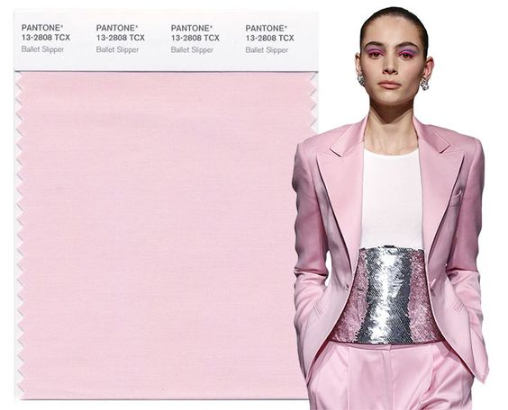 Fall/ Winter 2017-2018 Pantone Colors: Ballet Slipper