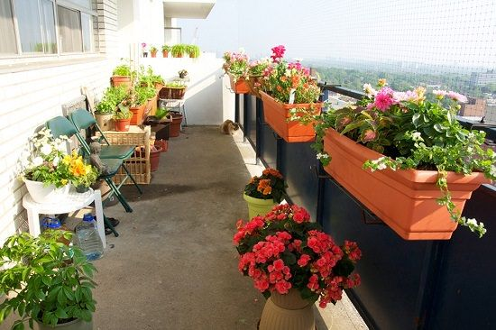 20 Diy Railing Planter Ideas For Balcony Gardeners Railing