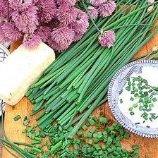 """Chives: Go well with steamed or roasted veggies with drizzle of lemon juice; eggs; Asian noodle dishes.  Pair with baked potatoes with sour cream or nonfat plain Greek yogurt.  Prep: snip with kitchen scissors for sauces, salad dressings or garnishes.  Place whole chives in an """"X"""" shape over stir frys or soups for a pop of color."""