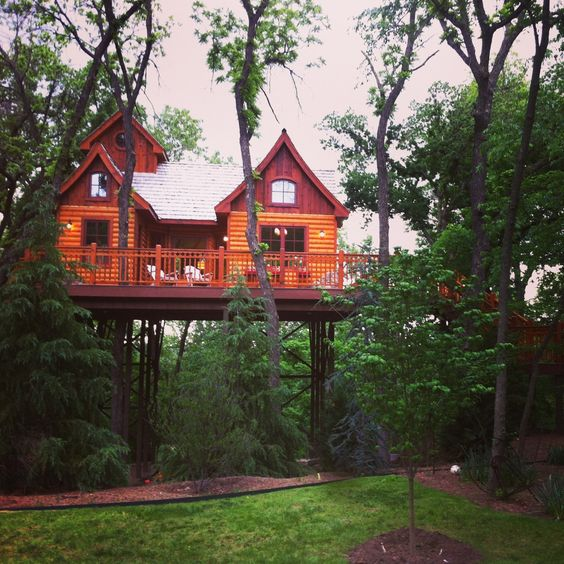I was in this treehouse tonight