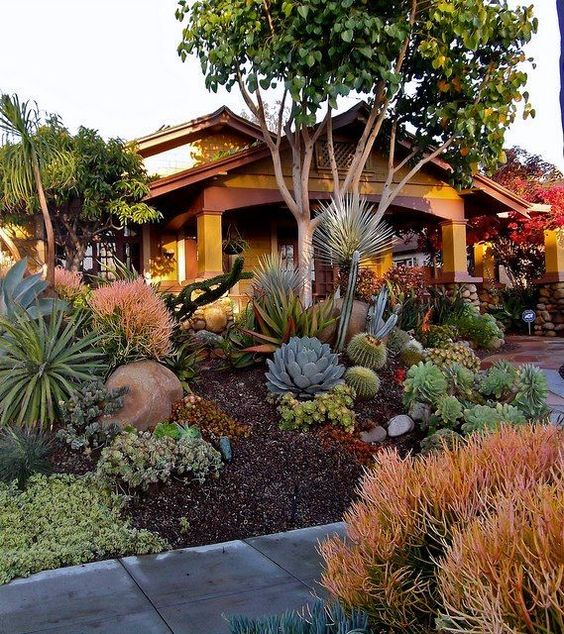 Drought Resistant Front Yard With Plants That Need Little