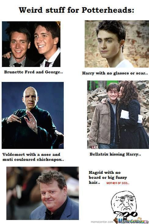 Memes Of Harry Poter In 2020 Harry Potter Cast Harry Potter Memes Harry Potter Puns