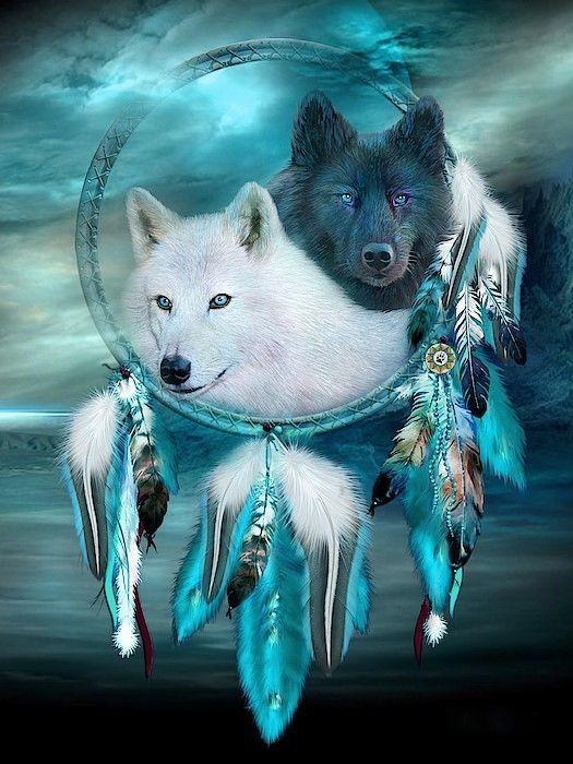 Native American Dream Catcher Night Wolve Spirits 8.5x11 Matte Art (Read Below)