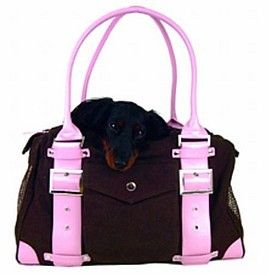 I got my puppy bling bag in the mail for Stig. Yay now I can transport him around without shoving him in my handbag with things like diaries and stuff poking him in the butt.