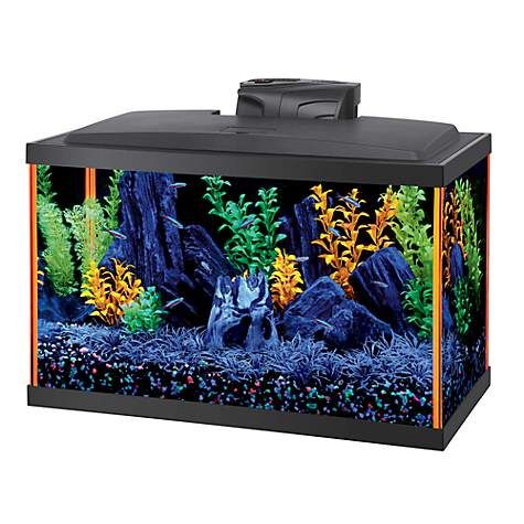 Aqueon Neoglow 10 Gallon Orange Led Kit Petco Aquarium Led Led Kit Pet Fish