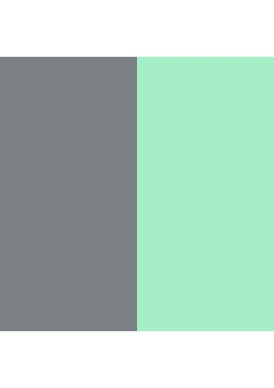 Best Gray And Mint Color Scheme Pretty Much Everything Goes 400 x 300