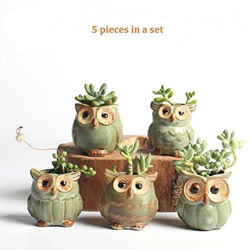 Pot de Fleur en Forme de Hibou de Bande dessin/ée pour la d/écoration de Jardin en c/éramique de Plantes succulentes
