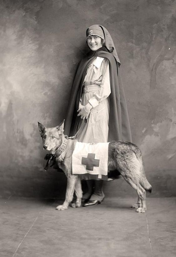 WWI-era nurse and rescue dog, 1910s.