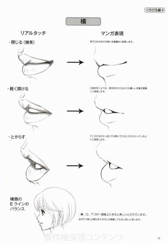 Lips With Side Profile If Face For Manga Anime Drawing Lipglossdarkskin Lips Drawing Mouth Drawing Drawing Tips