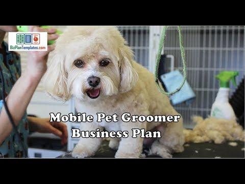 Mobile Pet Grooming Business Plan Example Template Pet Grooming