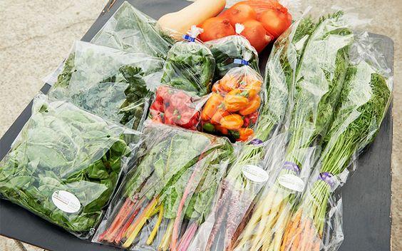 フレッシュグループ淡路島で直売している野菜ボックスの中身。グループ内のそれぞれが作った個性的な野菜をセットにしています