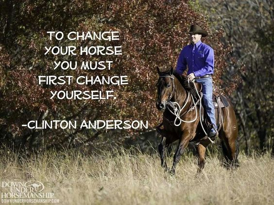 So true, you and your horse make a team. In order to better your team, u have to better yourself.
