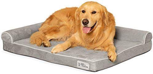 Amazon Com Petfusion Betterlounge Dog Bed W Solid Orthopedic Memory Foam Waterproof Liner Ykk Zippers Medium Memory Foam Dog Bed Dog Bed Covered Dog Bed Dog beds with zipper covers