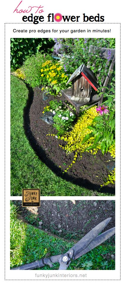 *How to edge flowerbeds like a pro in minutes!