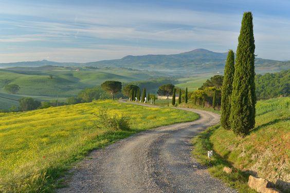 Cypressus track by Giuseppe Atzeni on 500px