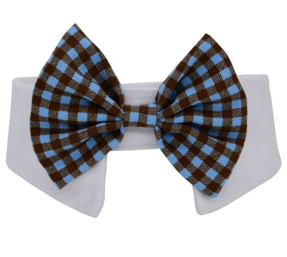 Formal Pets Bowtie, Dog Cat Pets Adjustable Bow Tie and Collar DCL01 * See this great image  : Dog Training and Behavior Aids