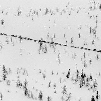 La vida de los nómadas siberianos retratados por el fotógrafo Sebastião Salgado