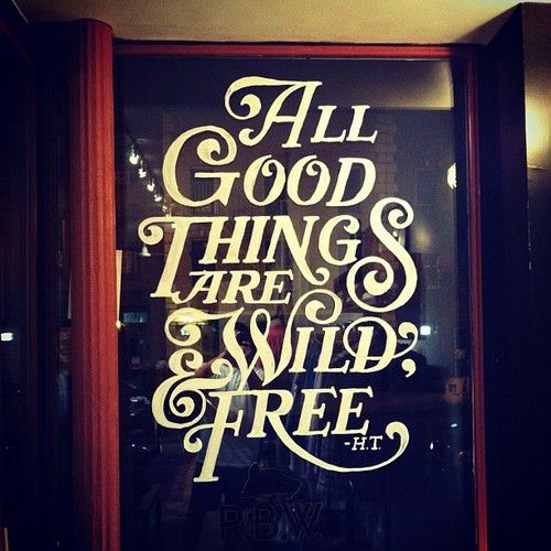 "Typeverything.com - ""All good things are wild & free"" by Matthew Tapia"