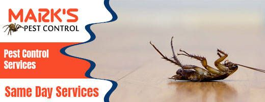 Pin On Marks Pest Control Melbourne