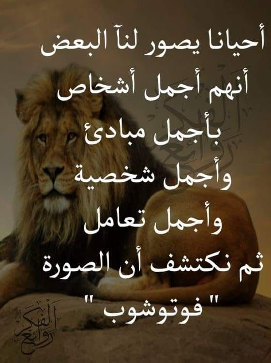 Pin By N K On روائع الحكم Cool Words Love Words Love Messages