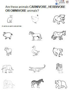 Herbivore Carnivore Worksheet for Kindergarten | ... CEIP LA SANTA ...
