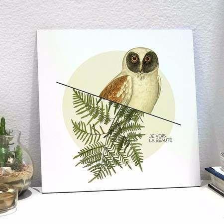 placa botanical owl