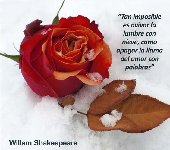 Tan imposible es avivar la lumbre con nieve, como apagar la llama del amor con palabras
