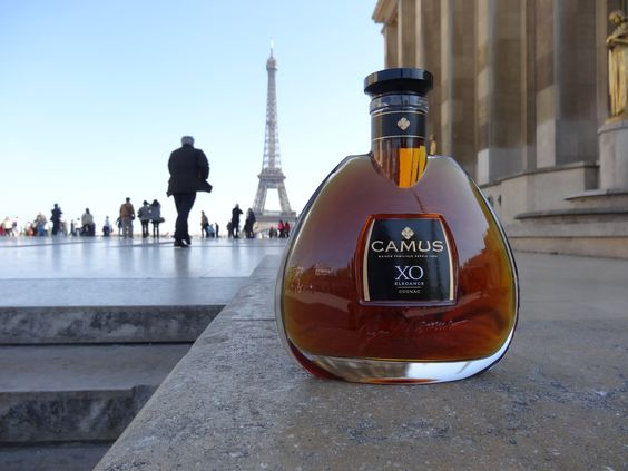 Great view of the eiffel tower...Just chilling in one of the most beautiful city of the world, wouldn't you agree ?