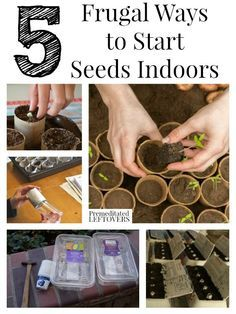 5 Ways to Start Seeds Indoors and vegetable gardening tips for starting seedlings. Includes ways to save money by making your own seed starters from recycled materials.