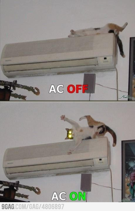 My cat has never slept on the air conditioner again...