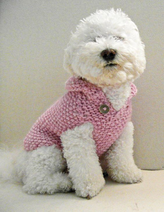 Pet clothing. Small Dog clothes. Pink Dog sweater. Hand knit
