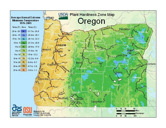 Oregon Plant Hardiness Map For Banonites It Looks Like