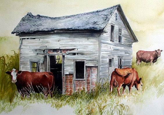 Cows Watercolor Old Building Barn