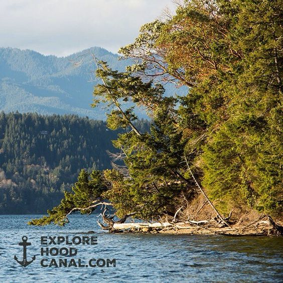 Enjoy the pristine beauty of Hood Canal. See more of the places we love on Instagram: http://ow.ly/OXvEa  #explorehoodcanal #wildsideWA #hoodcanal