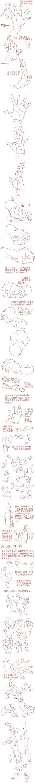 Mani (anatomia?!)