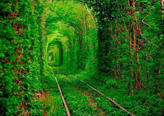 El Túnel del Amor, Klevan, Ucrania