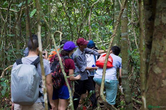 Trekking rừng quốc gia