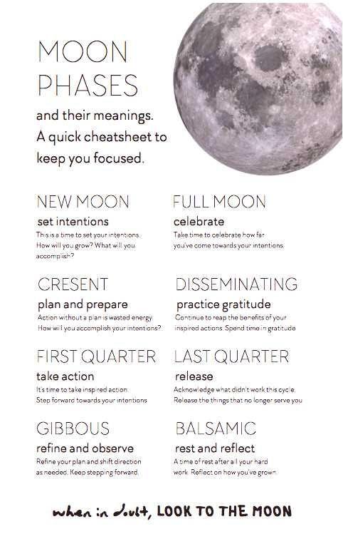 Celebrateu00a0 Reflection Printable Guidance Journal Reminds