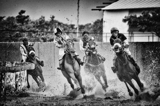esporte dos reis by mfaizm91