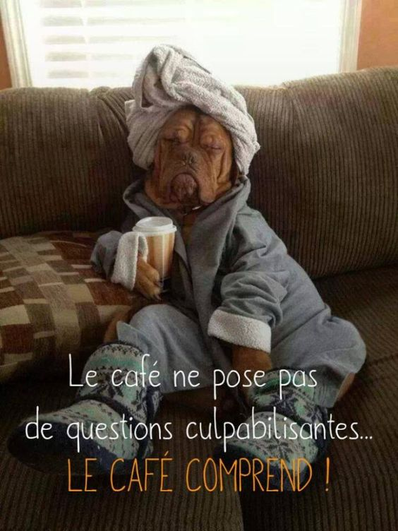 Coffee does not ask blaming questions - coffee understands.