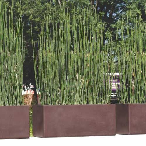 Jardineras macetas minimalistas de fibra de vidrio meue - Jardineras de fibra de vidrio ...