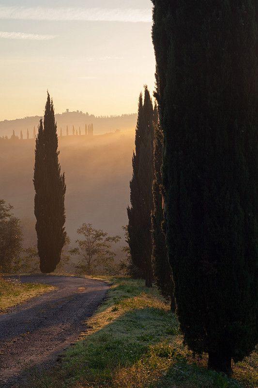 Montespertoli - Tuscany Italy
